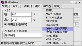 Fuji_hinagata