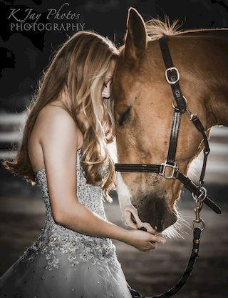 photo_horse